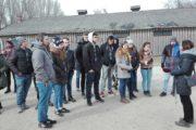Auschwitz (3)