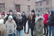 Auschwitz (6)