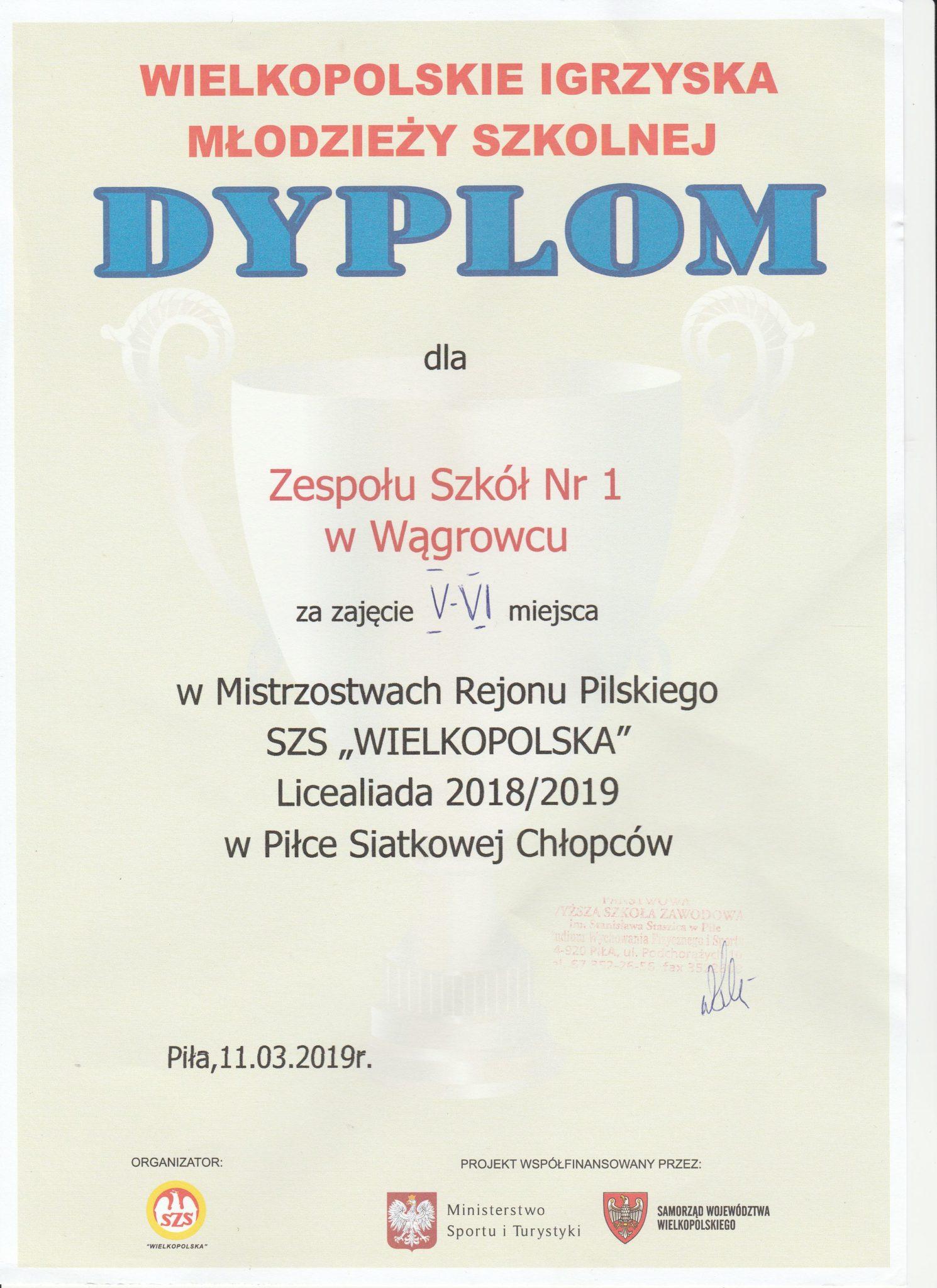 Dyplom Rejon Piłka Siatkowa Chłopcy 2019
