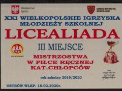 final wielkopolski2