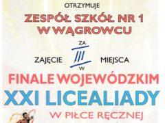 final wielkopolski4