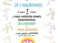 pilka siatkow2