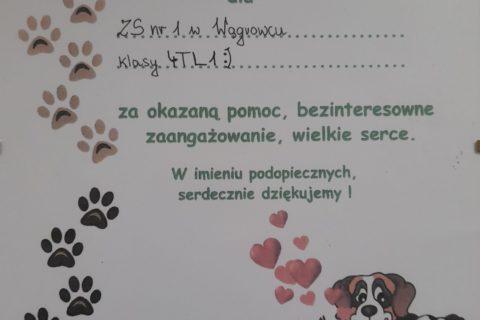 schronisko2